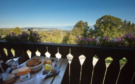 La Clemonie – Appartement la Ruche – Bed & Breakfast